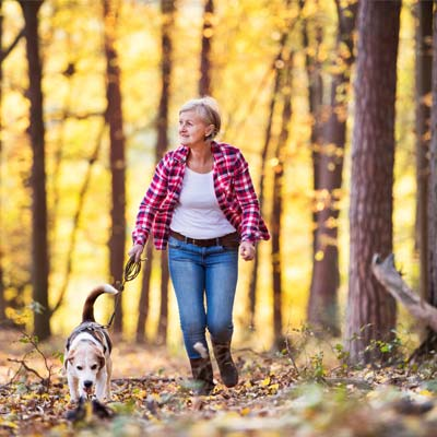 a person walking their dog in the woods