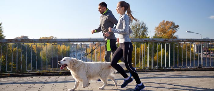 two people running with a dog