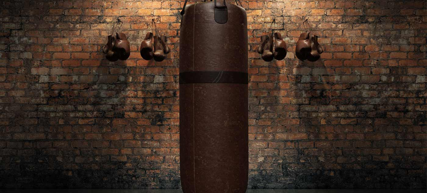Finding the Right Punching Bag for You