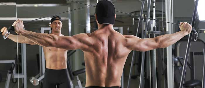 Reverse Cable Fly for rear delts