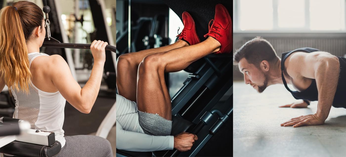 6-Week Push Pull Legs Workout Plan
