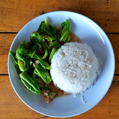 Plate of rice and high carb veg