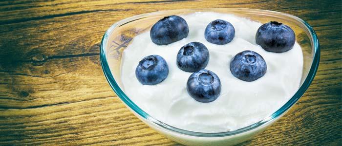 fat free yoghurt