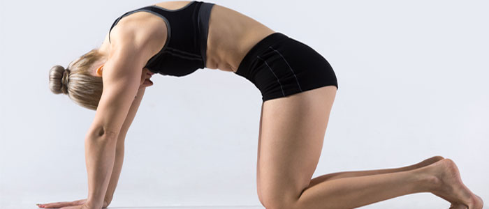 woman doing cat-camel back stretch