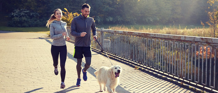 couple jogging with a dog