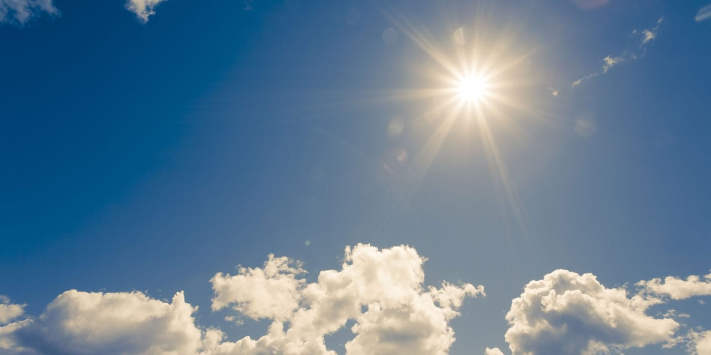 7 Sources of Vitamin D That Aren't the Sun