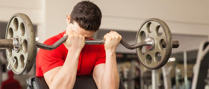 man doing Preacher Curls with a barbell and weights