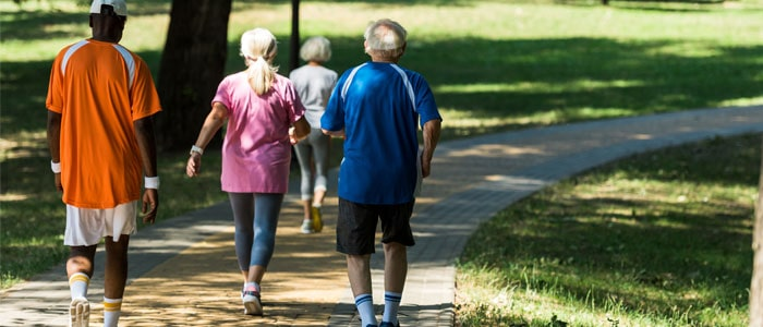 Group of elderly people walking in the park
