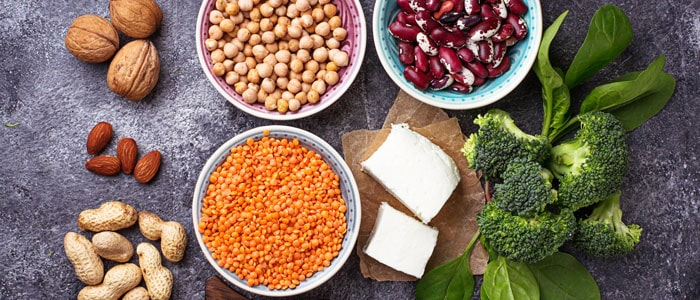 various types of vegeatrian proteins: legumes, broccoli, tofu and nuts