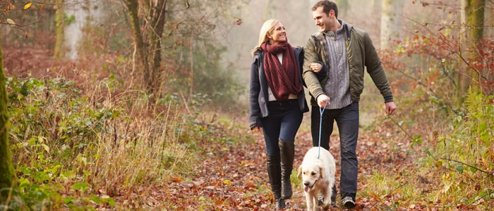 couple walking a dog in the woods