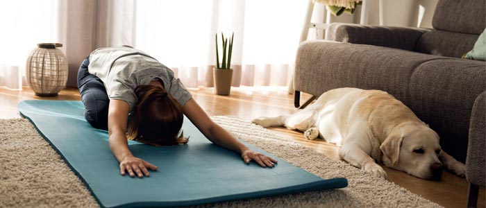 woman and a dog doing yoga in the living room