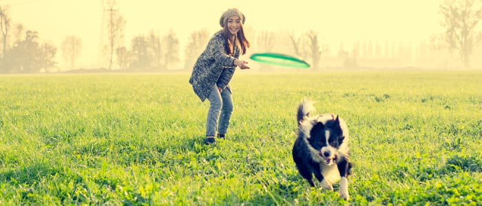 woman playing frisbe with a dog at the park